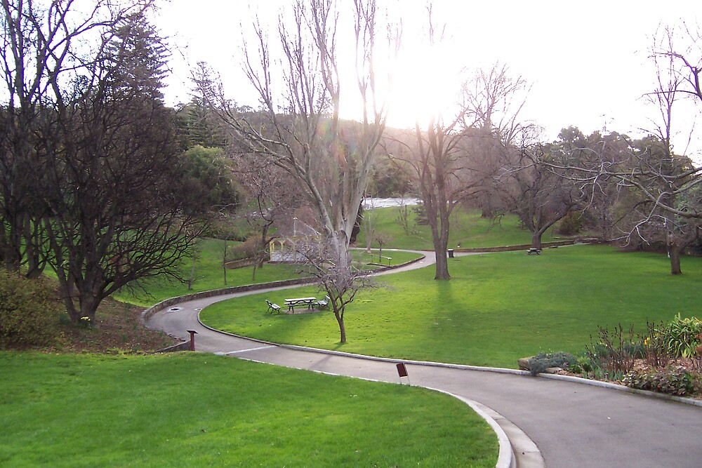 Hobart Botanical Gardens by Andrew Caple