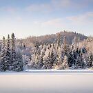 Winter in Quebec by Jola Martysz