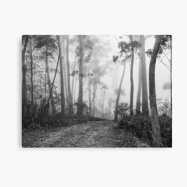 Misty View Canvas Print