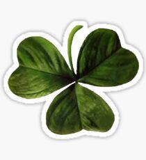 Shamrock Clover Irish Symbol Vector Sticker