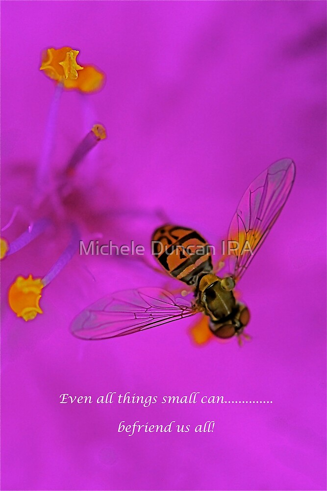 Befriend by Michele Duncan IPA