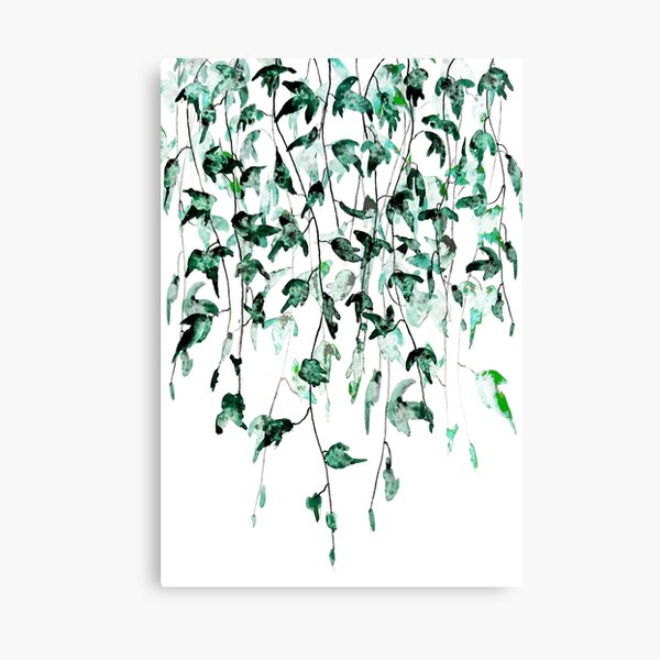 Ivy on the wall watercolor Canvas Print