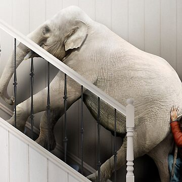 Pushing an elephant up the stairs by DerekBacon