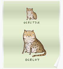 Ocelittle Ocelot Poster