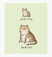 Ocelittle Ocelot Photographic Print