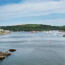 Fowey and Fowey estuary Cornwall  by eddiej