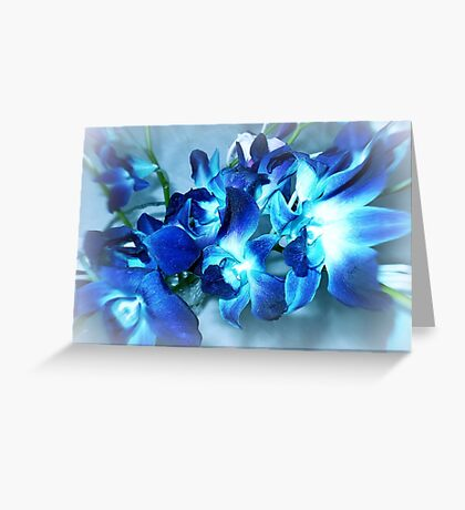 Singapore Orchids- in Blue Greeting Card