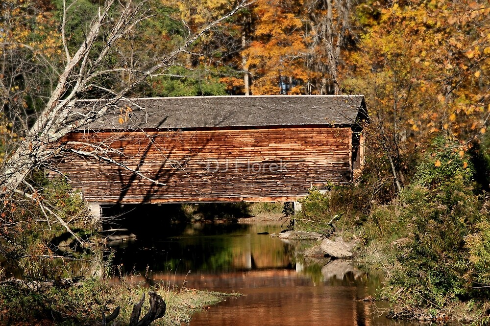 Hyde Hall Covered Bridge by DJ Florek
