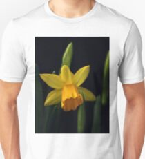 Pretty Little Daff T-Shirt