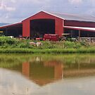 Reflections Of A Farm by James Brotherton