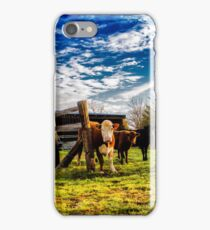 Cows in the Lot iPhone Case/Skin