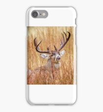 Texas White Tail iPhone Case/Skin