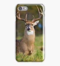 Texas Buck on Alert iPhone Case/Skin