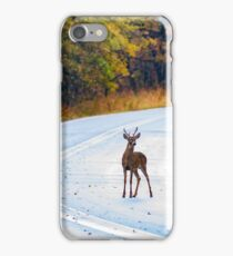 Deer in the Road iPhone Case/Skin