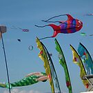 Redcliffe Kite Festival 3 by rufflesal