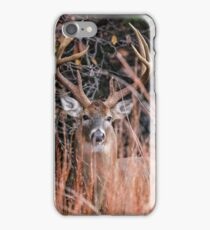 High Horned Buck iPhone Case/Skin