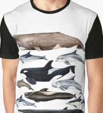 Whales, dolphins, orca and sperm whale Graphic T-Shirt