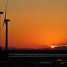 New Jersey Sunset - II by ctheworld