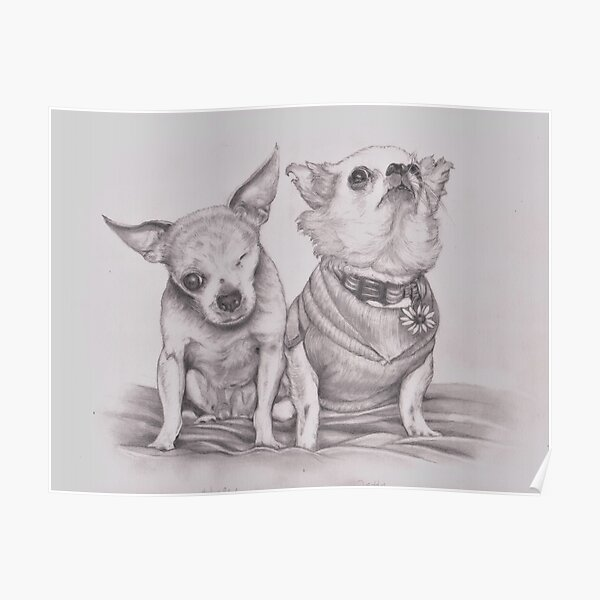 Harley and Teddy, Puppy Mill Survivors Poster