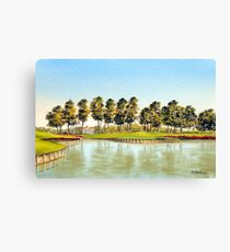 Sawgrass Golf Course Hole 17 Canvas Print