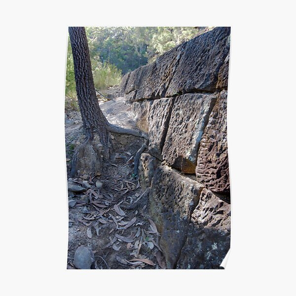 Convict Built Old Great North Road - Wiseman's Ferry Poster