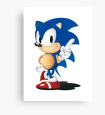 Sonic The Hedgehog Classic Canvas Print