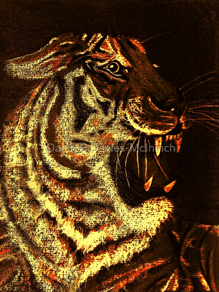 A Tigers Fire by Dawn B Davies-McIninch
