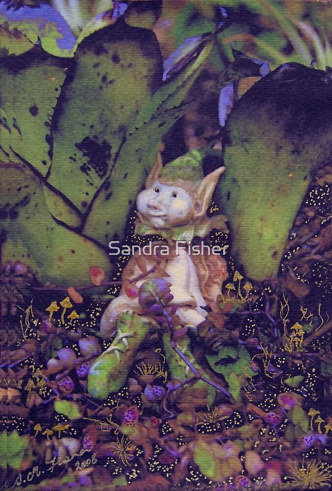 Pixie garden. by S Fisher