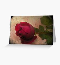 Forgotten Rose Greeting Card