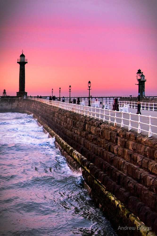 Whitby XIV by Andrew Briggs