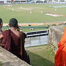 Sri Lankan monks watch the cricket by David Kelly