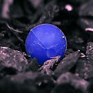 Lost BB blue version by SNAPPYDAVE