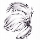 Betta - Charcoal pencil drawing of a Siamese Fighting Fish by Rebecca Rees