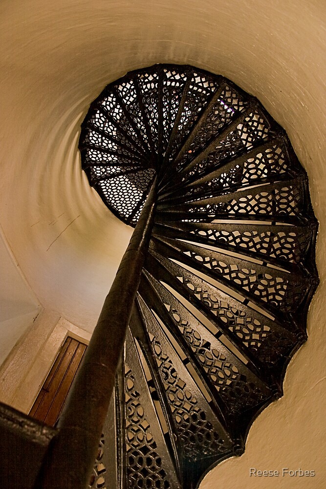 Spiral Stairs Of Door County Lighthouse by Reese Forbes