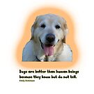 Dogs are better than human beings by Ian McKenzie