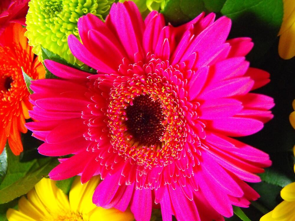 Pretty In Pink by igotmebabe