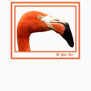Redhead II by gili