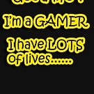 Gamers by Alan Rodmell