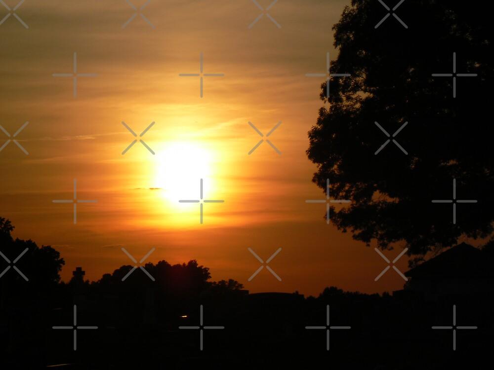 Carolina Sunset by Sheila Simpson