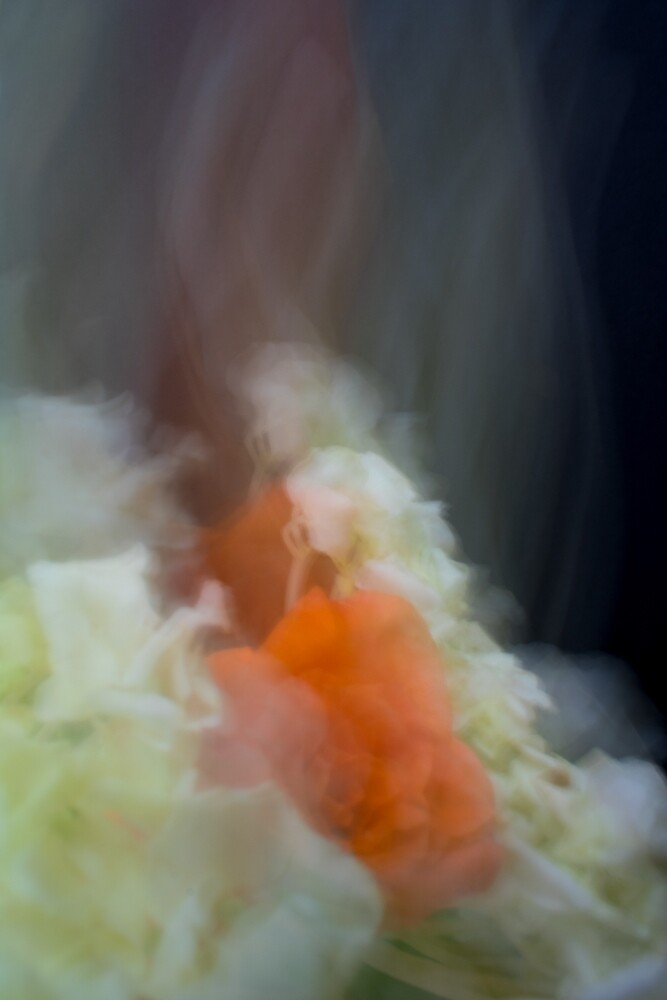 Fleur Blur-Abstract Orange Rose & White Flowers by AhUmDesign