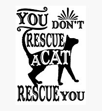 - Funny cat saying. Photographic Print