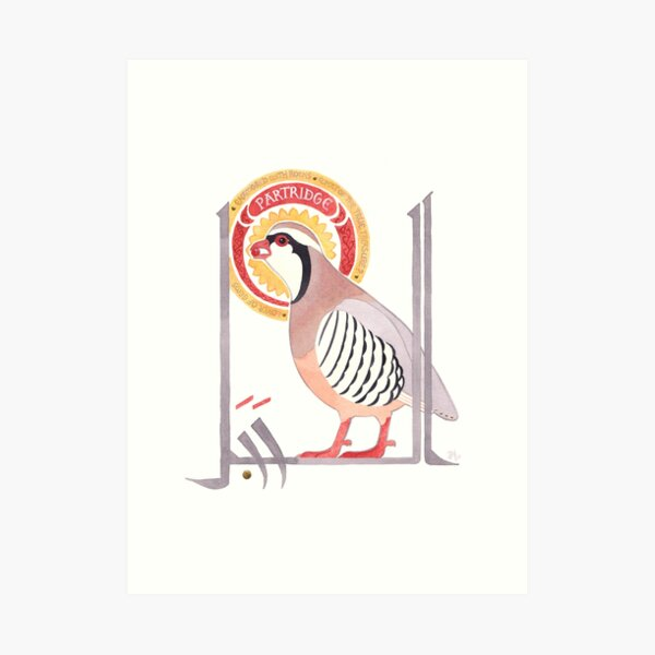 The Conference of the Birds: The Partridge Art Print