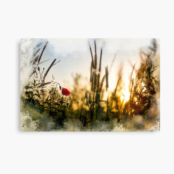 A small magical world painted Canvas Print