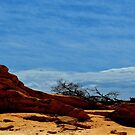 Hot and dry ...   The Nullarbor Desert by myraj