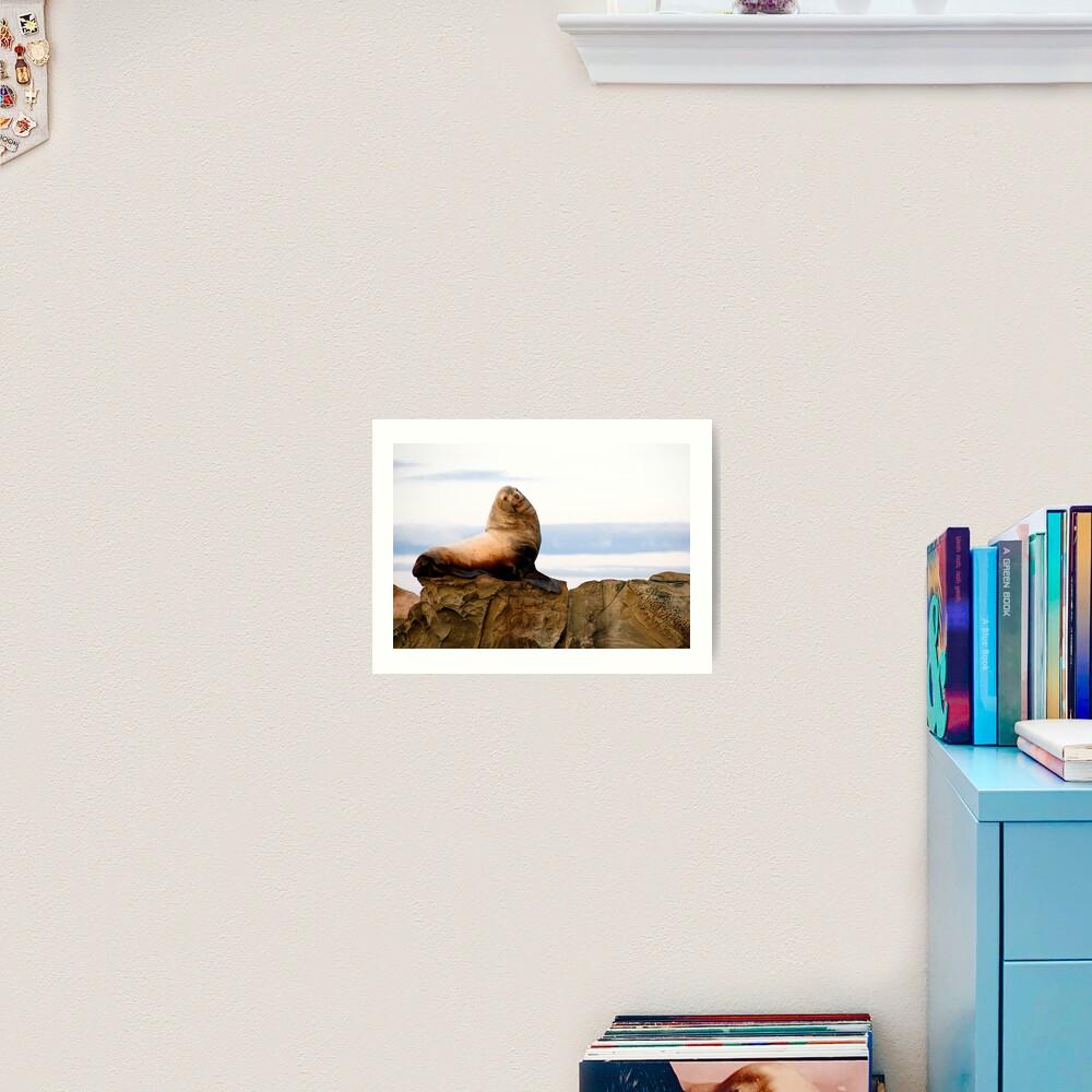 Proud Sea Lion Art Print