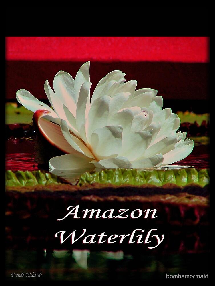 Amazon Waterlily by bombamermaid
