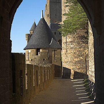 Carcassonne castle by MikLav