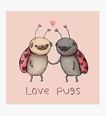 Love Pugs Photographic Print