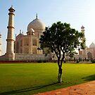 The Taj Mahal on a sunny day by John Dalkin