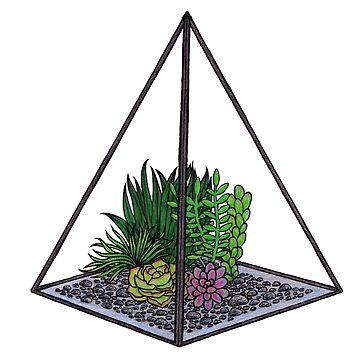 Succulent Terrarium by maryhorohoe